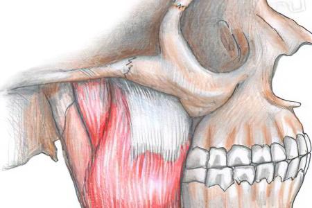 есть трудные, атрофия мышц лица с одной стороны фото глубокую миску