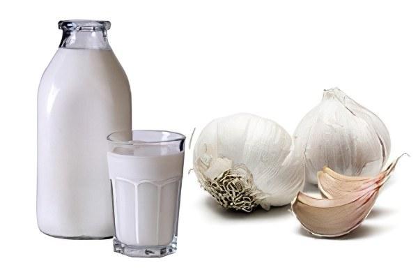 рецепт от глистов чеснок и молоко