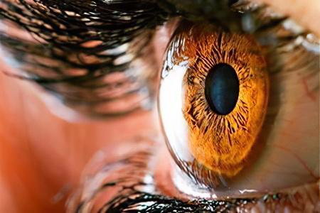 Дистрофия сетчатки глаза – причины, симптомы, последствия ...