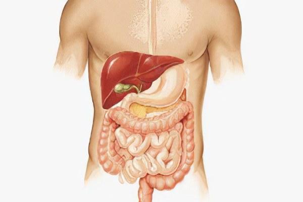 Болезнь суставов вызвана гельминтами настойка от суставов коровяка скипетровидного