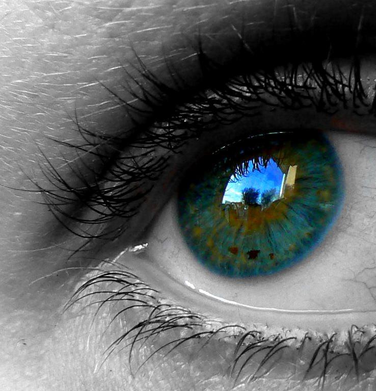 Глаз видеть цветов