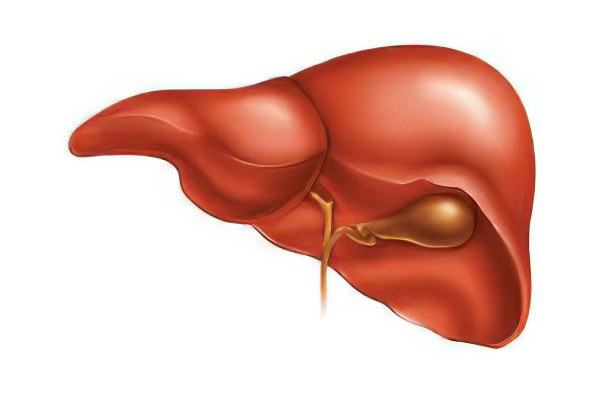 Кровь на гепатит с форум