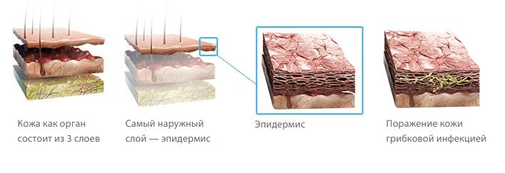 Низорал крем грибок ногтей отзывы
