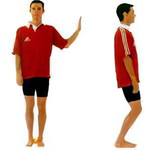 Упражнения Микулина