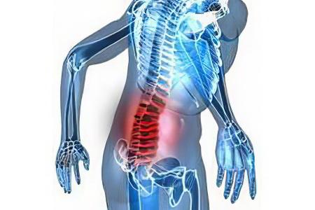 Жировик на спине болит и покраснел