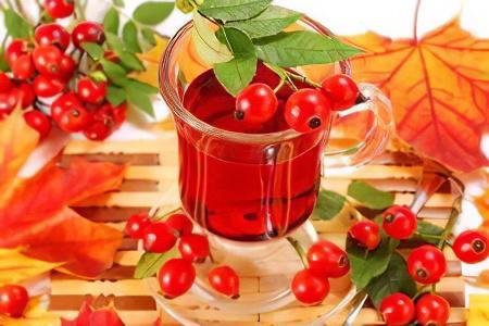 http://ayzdorov.ru/images/Lechenie/shipovnik52827.jpg