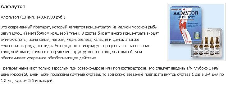 spina_ykoli_4.png