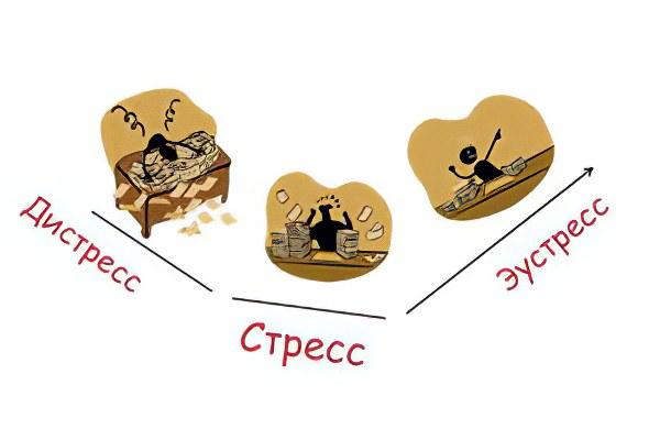 https://www.ayzdorov.ru/images/Lechenie/stress_vidi.jpg