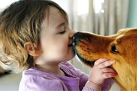 Причины токсокароза у детей