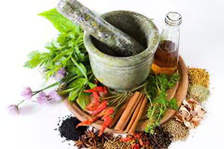 какие лекарственные травы можно применять для разжижения крови