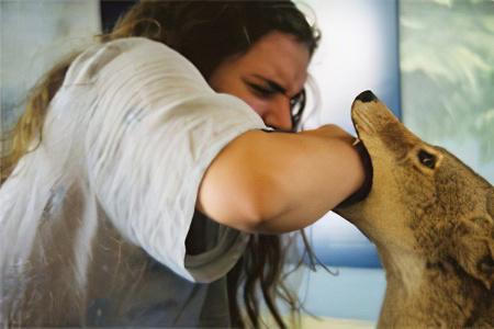Собака напала на людину! Чиє життя важливіше?  (ВІДЕО)