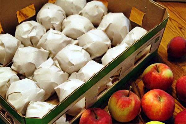 Как хранить яблоки дома