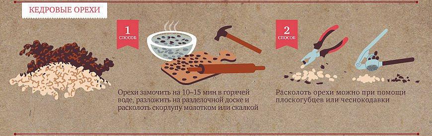 Кедровые орехи - польза и вред, применение настойки и масла кедрового ореха