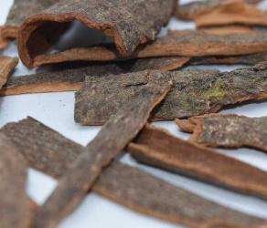 Китайская корица (Cinnamomum Cassia)