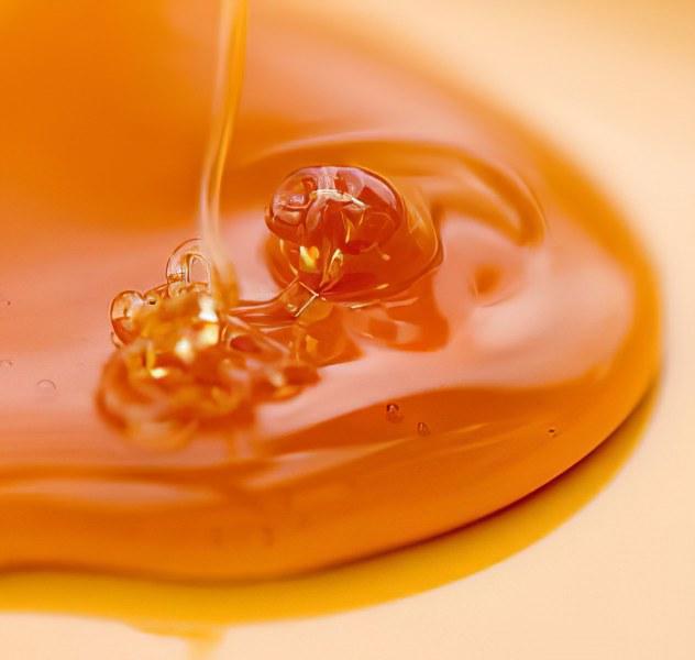 мёд из амурского бархата