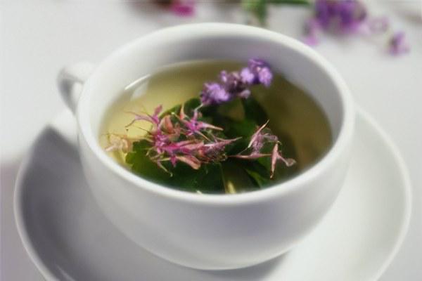 отвар иван-чая