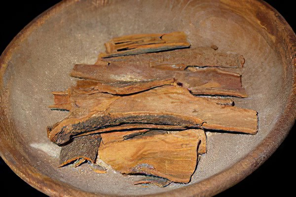 Коричное дерево – полезные свойства и применение коричного дерева, цветы коричного дерева