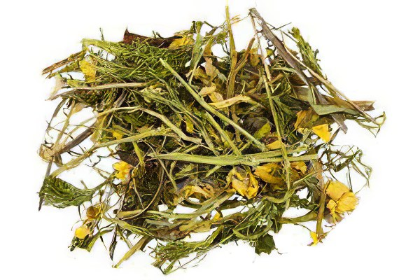 Адонис весенний – рецепты, полезные свойства, противопоказания