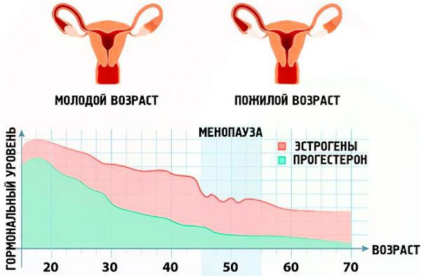 Климакс у женщин
