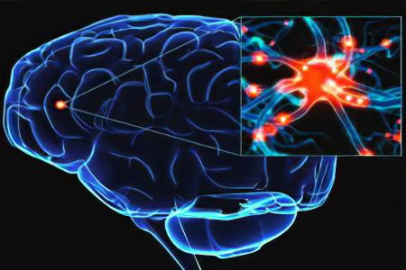 Болезнь Паркинсона – причины, симптомы, стадии, как лечить болезнь Паркинсона? Профилактика