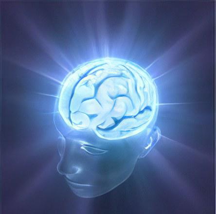 мозг132