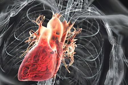Сердечная недостаточность врожденные пороки