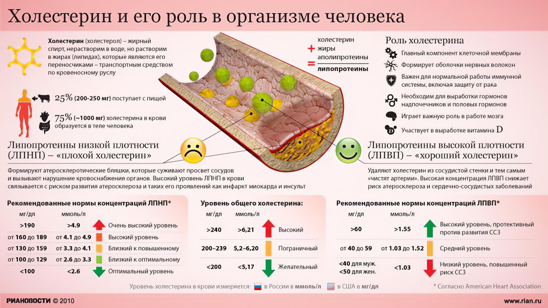Анализ крови на плохой и хороший холестерин водительская медицинская справка по форме 83/у-89 в городе тосно