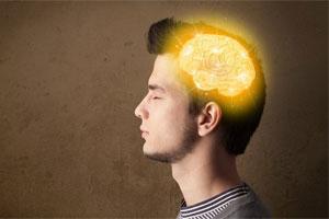 Продукты, полезные для мозга и сосудов — Блог Викиум